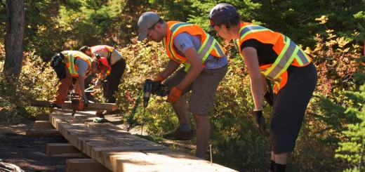 BC Parks rangers and Knee Knacker volunteers build a boardwalk near Cabin Lake.